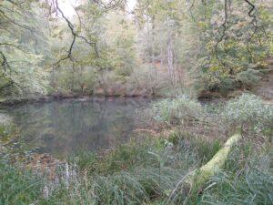 balade_nature.2